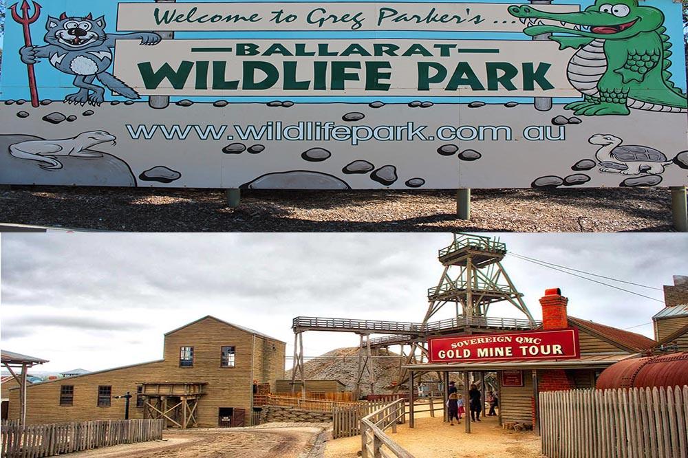 Ballarat Sovereign Hill with Wildlife