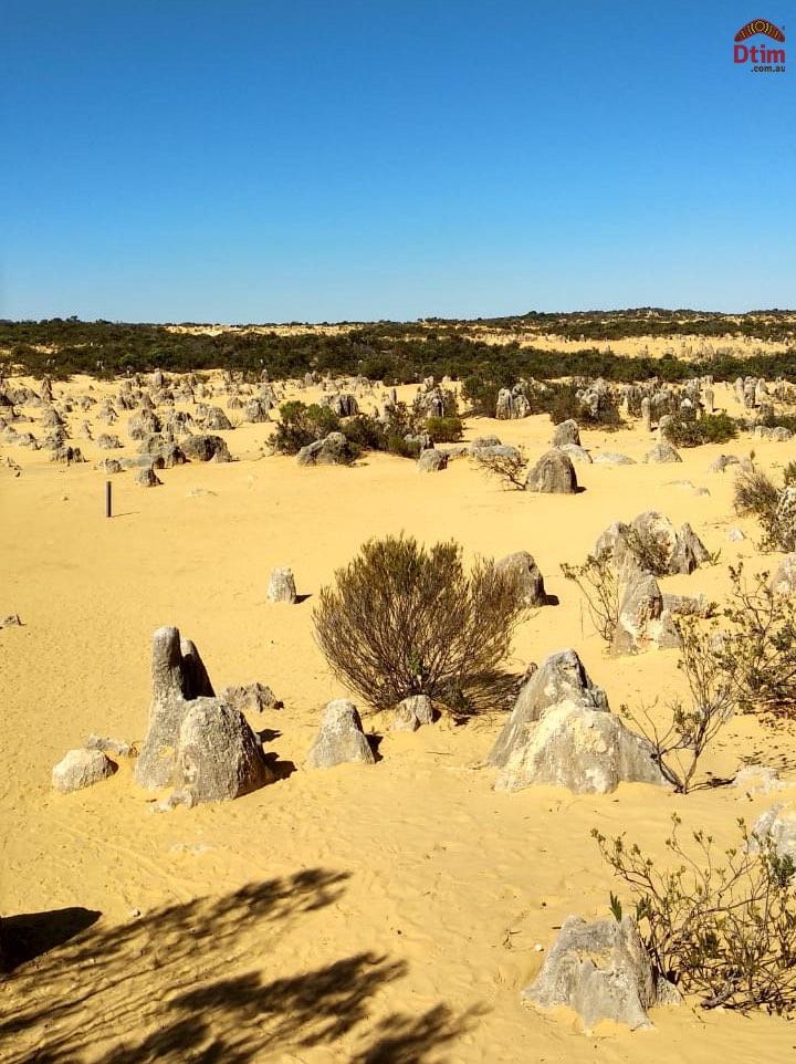 Pinnacles Desert Explorer