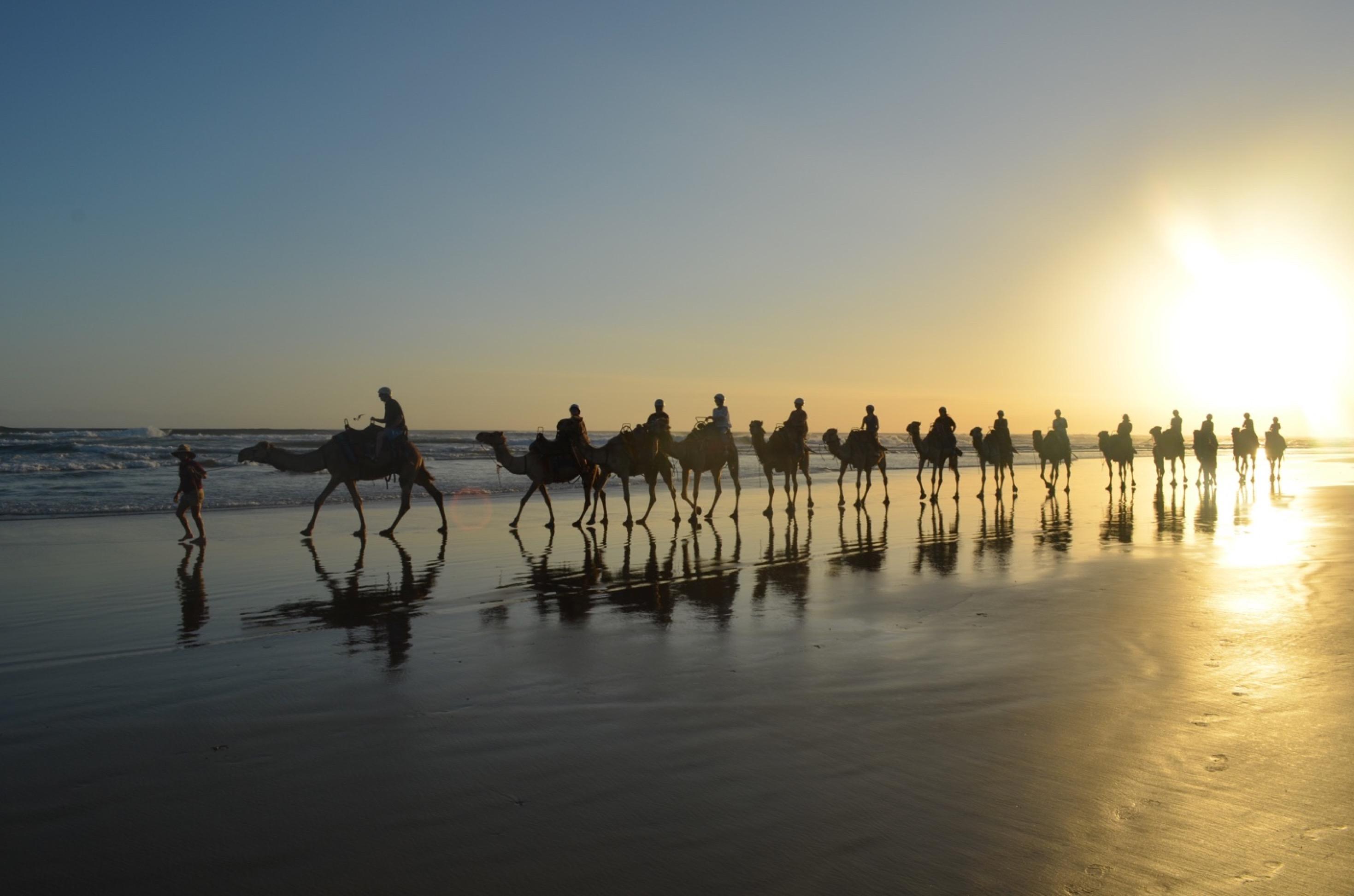 Sunset Camel Riding (60 Minutes)